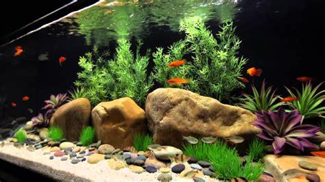 http www current satellite freshwater led aquarium light fixture with
