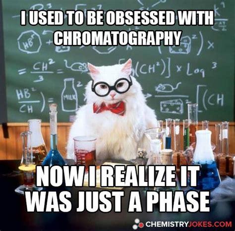 Funny Chemistry Memes - 60 best chemistry cat images on pinterest chemistry