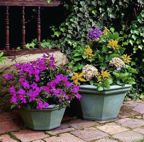 Large Plant Tubs Best 25 Large Plant Pots Ideas On Large