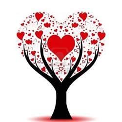 tree hearts 106 best trees images on tree
