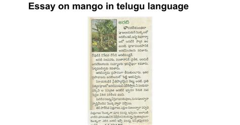 Uses Of Trees Essay In Tamil by Essay On Mango Tree In Telugu Theleaf Co