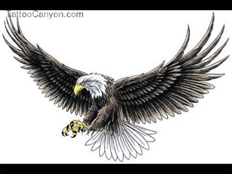 american eagle tattoo designs open large wings eagle design