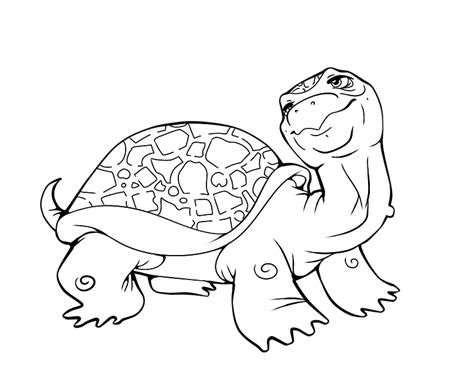 baby turtle coloring pages az coloring pages