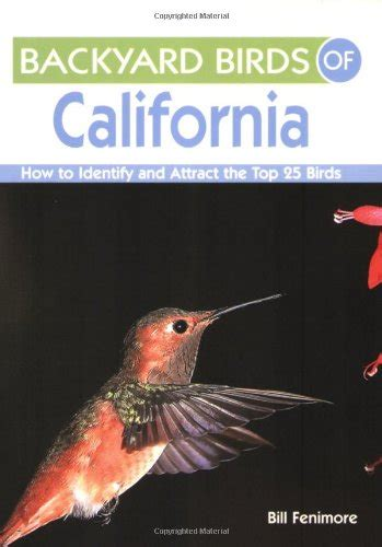 backyard birds of california how to identify and attract
