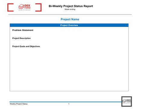 1 Page Report Template