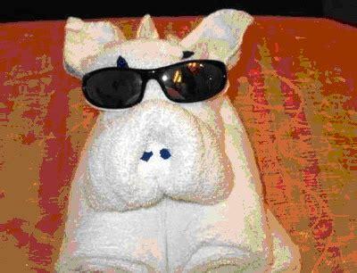 Handuk Anjing lucu anjing mirip handuk dan handuk mirip anjing kkk s