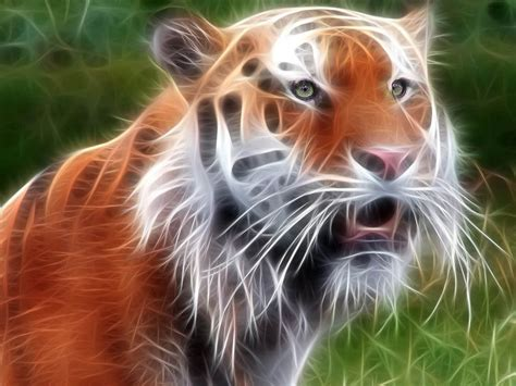 free animal painting wallpapers tiger 3d wallpapers