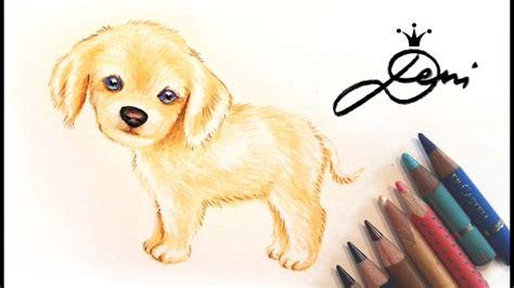 wie zeichnet eine hund zeichnen lernen wie zeichnet einen labrador