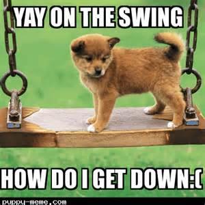 Cute Puppies Meme - cute puppies memes