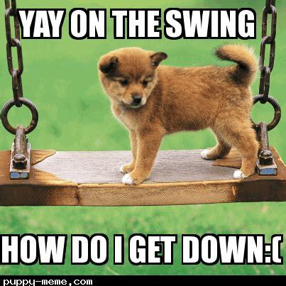 Cute Puppies Memes - cute puppies memes