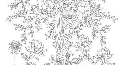 advanced nature coloring pages advanced coloring owl nature coloring page coloring
