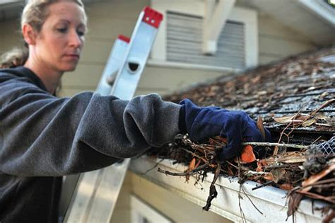 safety tips  cleaning gutters bradenton home repair