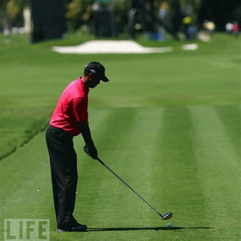 tiger woods swing tiger woods 2009 swing sequence gif golf swing