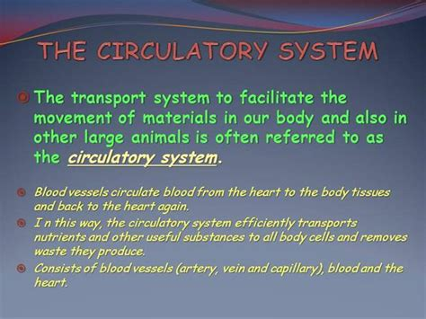 cardiovascular powerpoint template free circulatory system powerpoint template