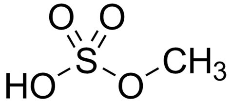 Hydrogen L by Bond Why Is Hydrogen Sulfate Put Together As It Is