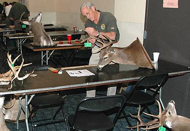 Scdnr Offices by Antler Measuring Sessions Set Across South Carolina