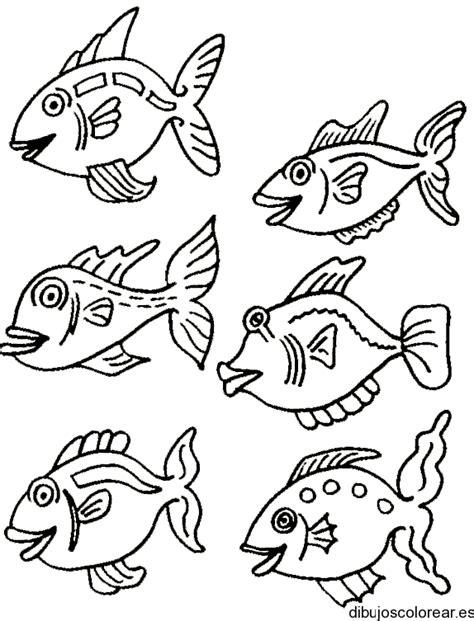imagenes de niños nadando para colorear dibujo de peces nadando juntos