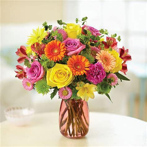 1-800-Flowers® Confetti Bouquet™ | 1-800-Flowers 4 Gift ... 1 800 Flowers.com