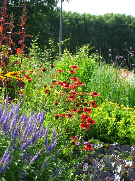 Borders For Flower Beds by File Flower Beds Border 01 Jpg