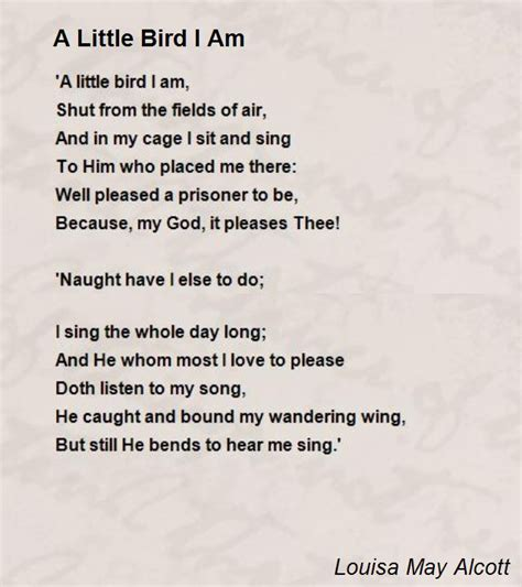 a little bird i am poem by louisa may alcott poem hunter
