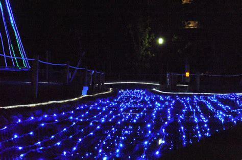 christmas ground lights christmas lights card and decore