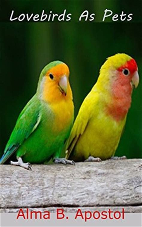 lovebirds as pets how i raised cared trained and tamed my lovebirds chicks to a very mature