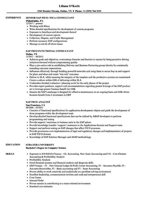 sap mm consultant resume resumecompanion com resume samples