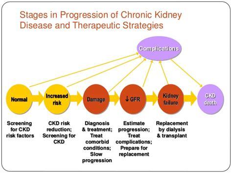protein kidney disease protein and kidney failure ketogenicdietpdf