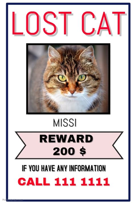 lost cat poster template lost cat template postermywall