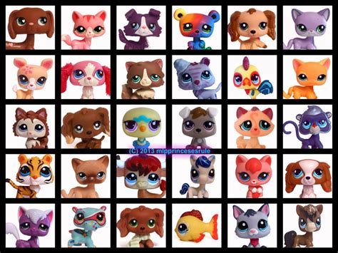 puppy shoo littlest pet shop pets littlest pet shop fan 35161466 fanpop page 5