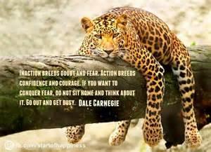 Jaguar Quotes Quotes Askideas