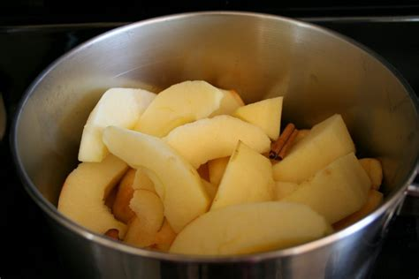 top 28 what can i make with apples best 20 homemade apple pie filling ideas on pinterest