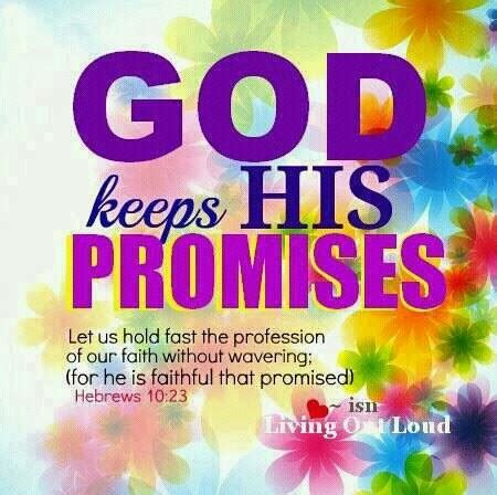 in numbers holding onto promises everywhere how to be reminded of god s word everywhere you go books hd new year 2018 bible verse