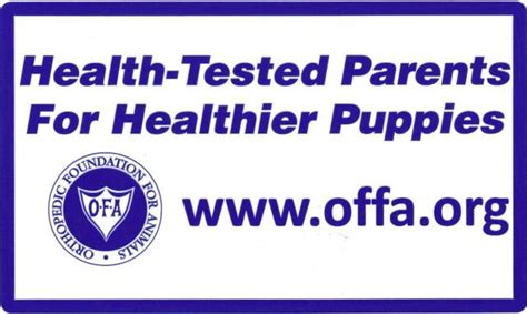 ofa dogs cher car kennels