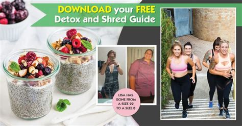 Mummy Detox by Your Free Detox And Shred Guide The Healthy Mummy