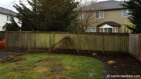 soggy backyard solutions portland landscapers turn wet backyard into usable living area