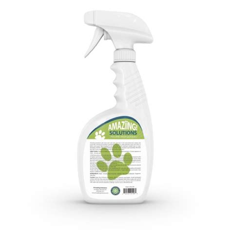 cleaning urine from upholstery how to remove the smell of cat or dog urine from