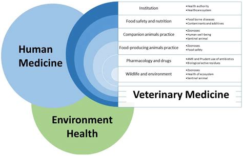 Xtranormal Recommendation Letter Writing A Letter Of Recommendation Veterinary Epidemiology Websitereports991 Web Fc2