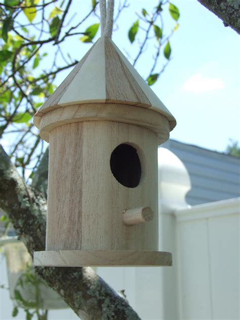 bird houses cool bird house plans