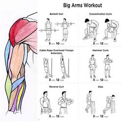 bicep workouts at home big arms workout plan fitness health routine bicep