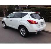 2010 Nissan Murano  Pictures CarGurus