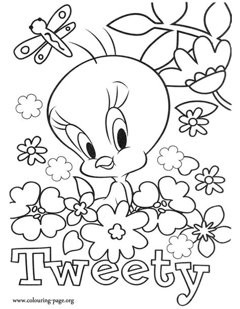 coloring pages of birds and butterflies baby tweety bird coloring pages coloring home