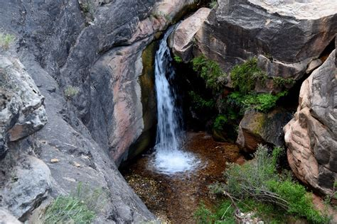 Garden Creek by Garden Creek Bright Trail Grand Arizona
