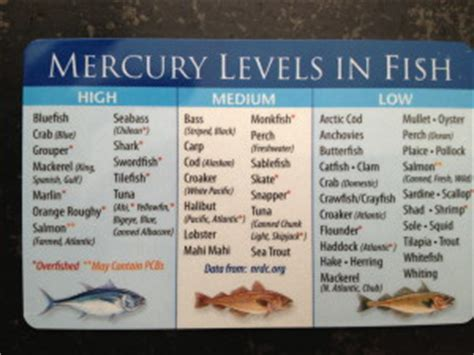 Mercury Poisoning Detox Diet by Heavy Metal Toxicity In Fish And Seafood