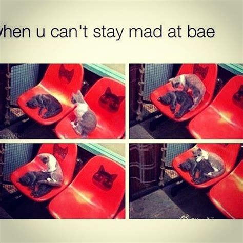 Stay Mad Meme - 33 best images about when bae on pinterest 8 hours