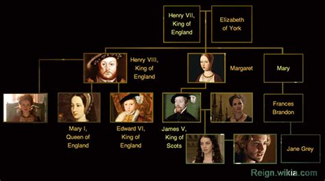 of scots downfall the and murder of henry lord darnley books family tree wiki fandom powered by wikia
