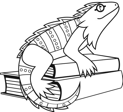 coloring pages free printable iguana coloring pages coloring me