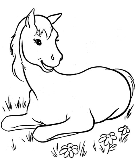 coloring pictures of baby horses free printable horse coloring pages for kids