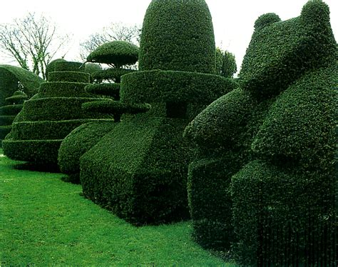 topiary work how to create hedge sculptures master garden