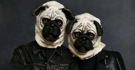 pug in a costume top 5 costume ideas for 2015 poplar ridge apartmentspoplar ridge apartments
